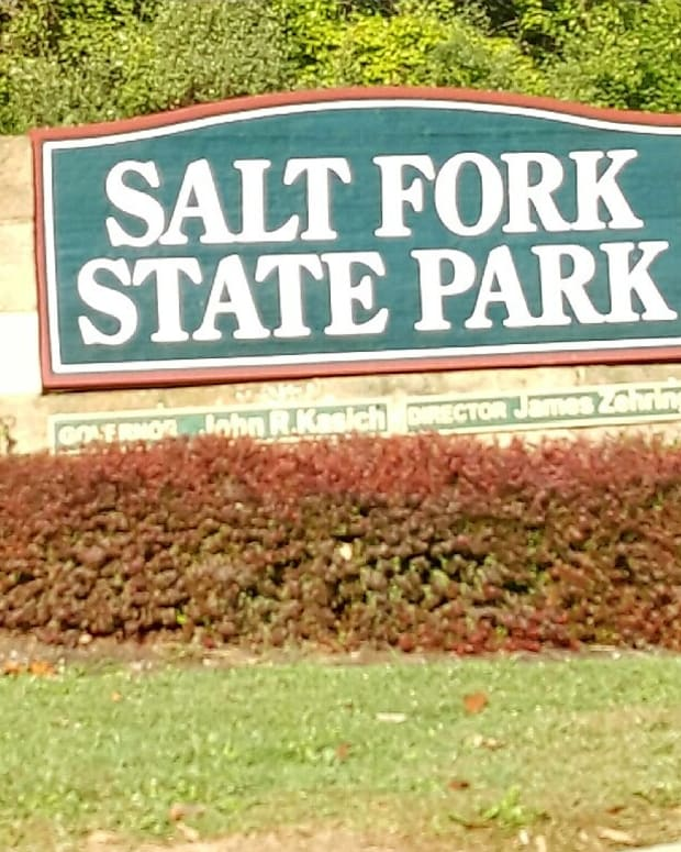 a-visitors-guide-to-salt-fork-state-park-in-southeast-ohio