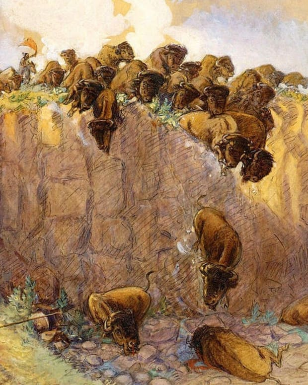 buffalo-jumps-the-plunge-of-death
