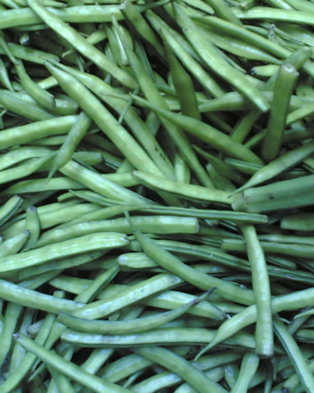 guar-cluster-beans-guar-gum-nutrition-health-benefits