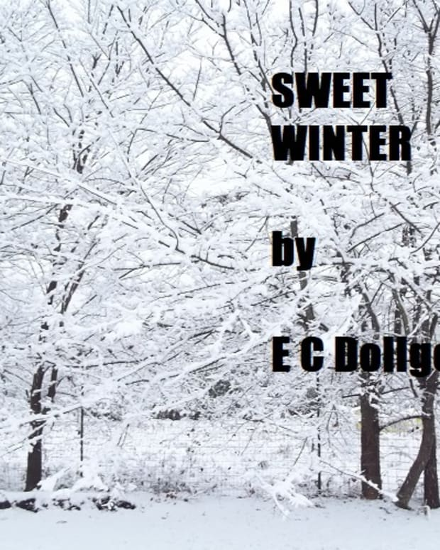 sweet-winter
