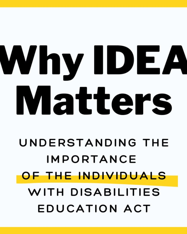 the-individuals-with-disabilities-education-act-why-idea-is-crucial-to-bridging-the-gap