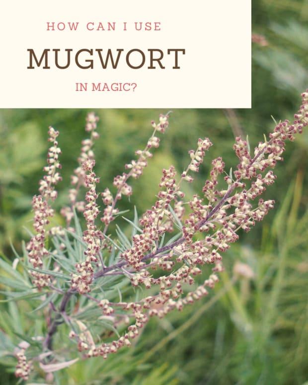 lessons-in-magical-herbalism-mugwort