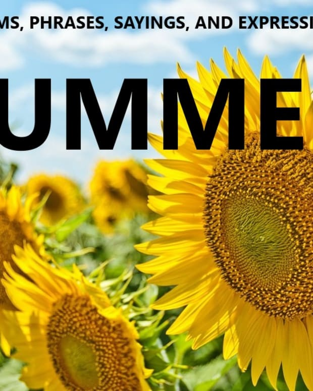 summer-idioms-and-adages