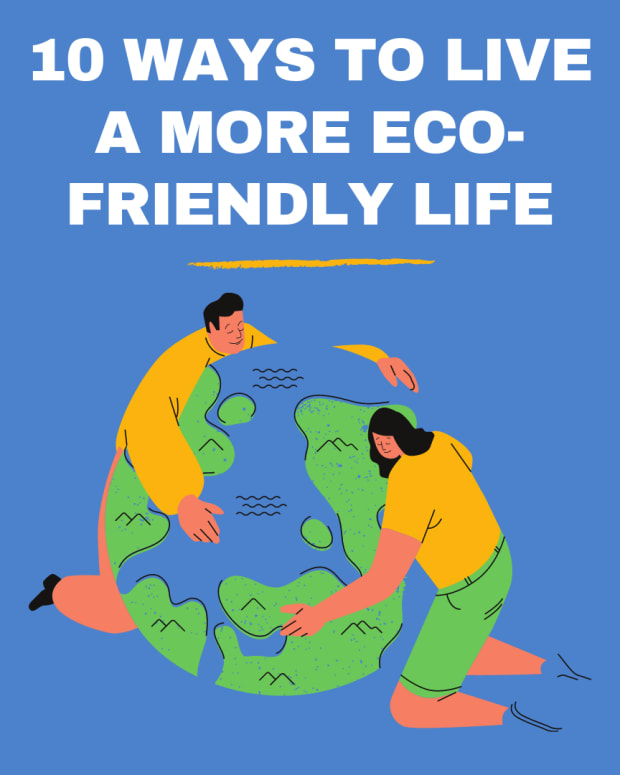 what-it-means-to-be-eco-friendly