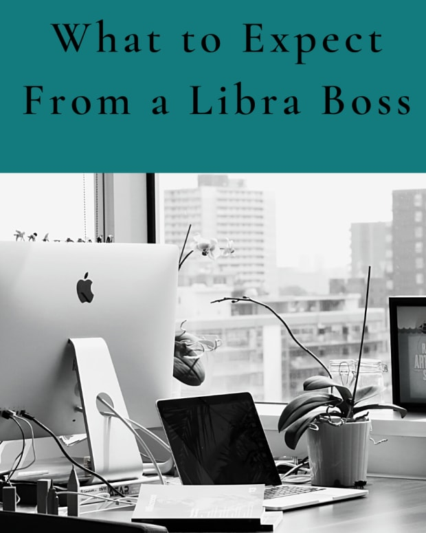 working-for-a-libra-boss-its-a-war-zone-of-indecision
