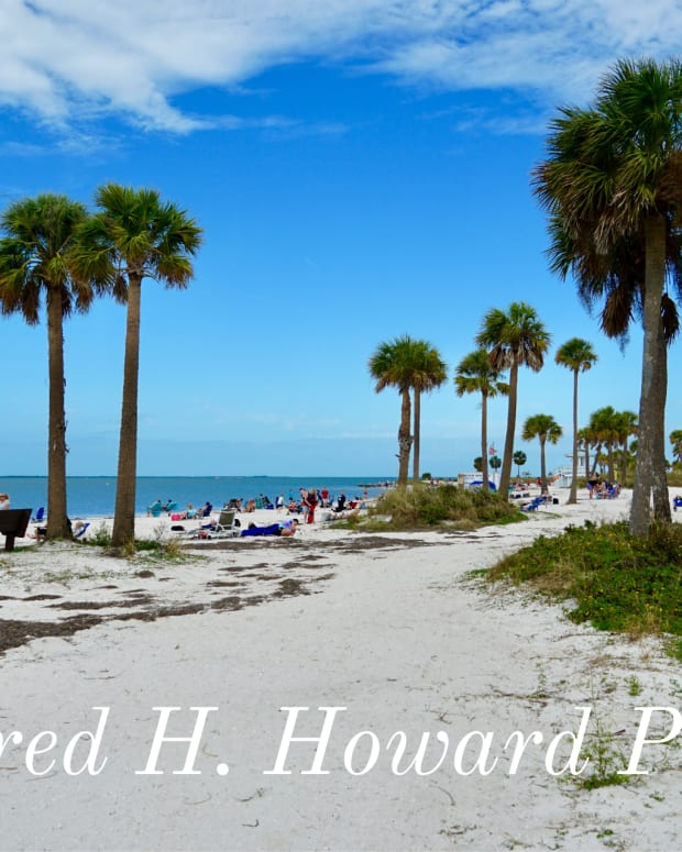 fred-howard-park-hidden-gem-of-floridas-gulf-coast