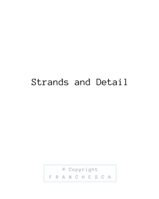 38th-article-strands-and-detail