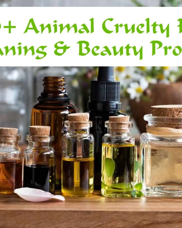30-animal-cruelty-free-products-that-can-make-a-difference-in-your-life