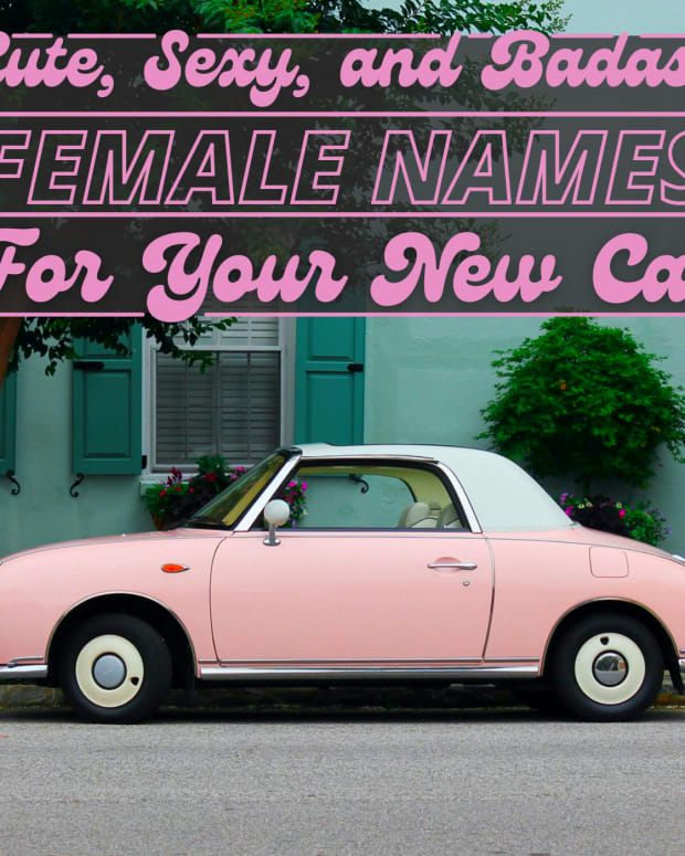 cute-car-names