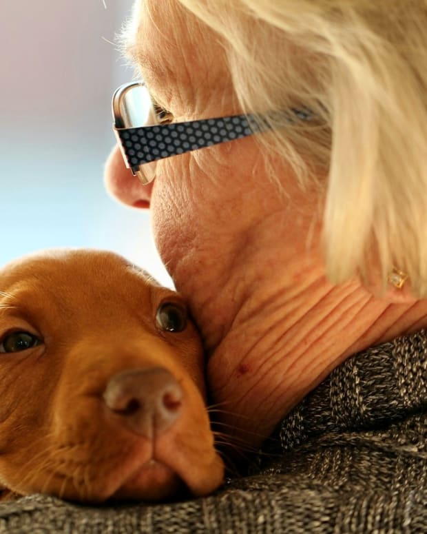 daily-granny-gram-the-importance-of-pets