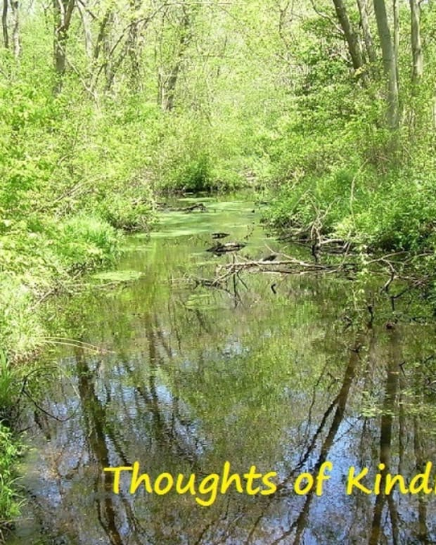 thoughts-of-kindness