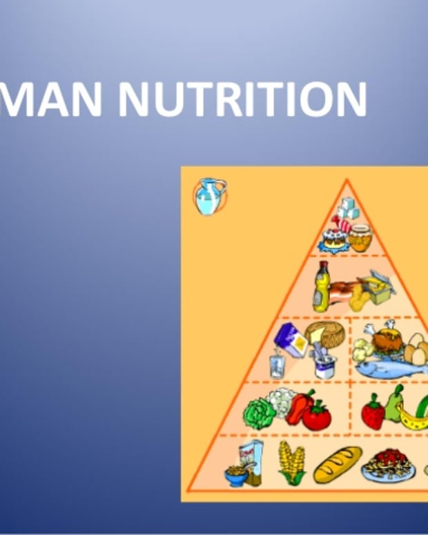 importance-of-nutrition-for-good-health