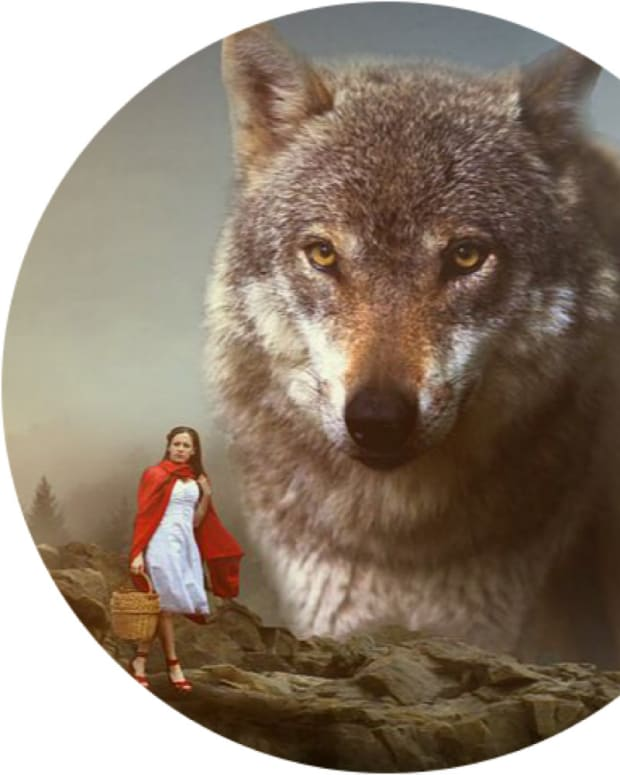 narcissist-and-little-red-riding-hood-tamara-yancosky