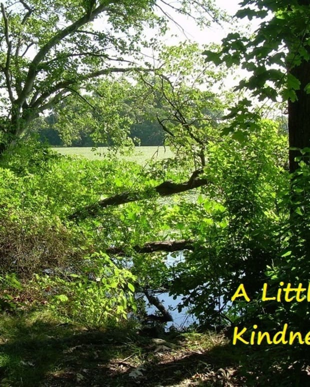 a-little-kindness