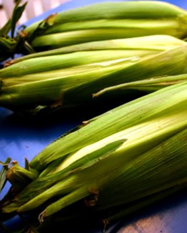 ears of corn wrapped in their husks and ready to grill