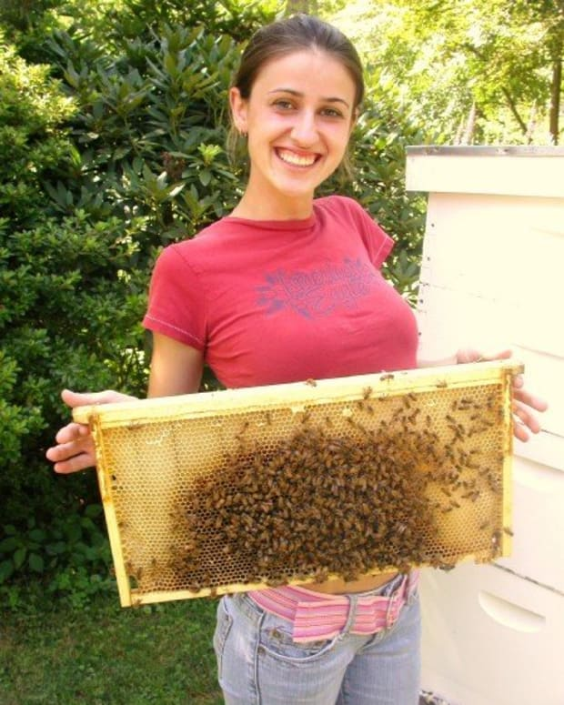 Thats me, holding a frame of bees in 2007!