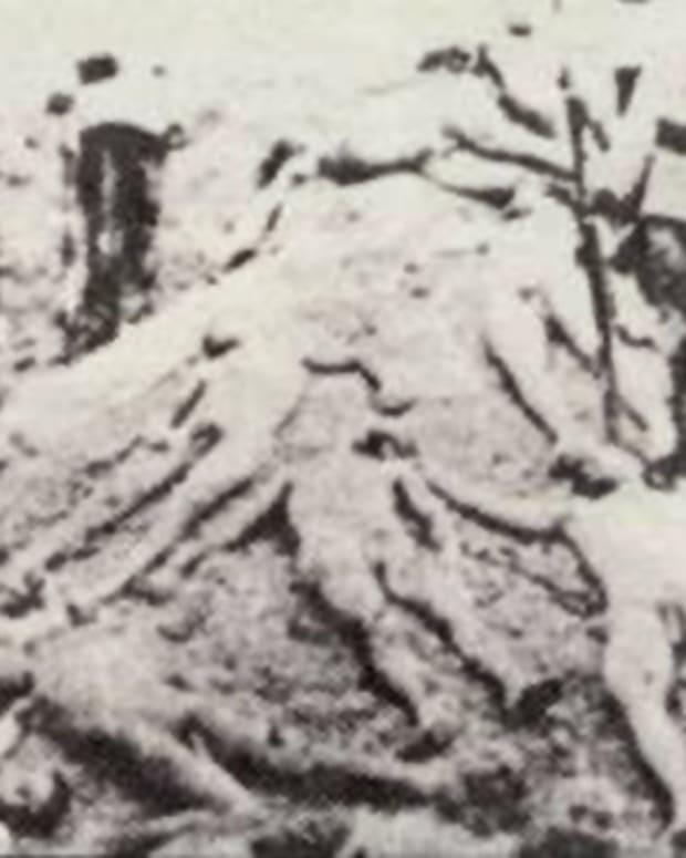 turkish-denial-of-genocide-is-black-spot