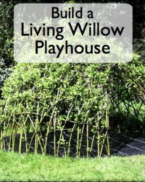how-to-grow-your-child-a-living-den-or-playhouse