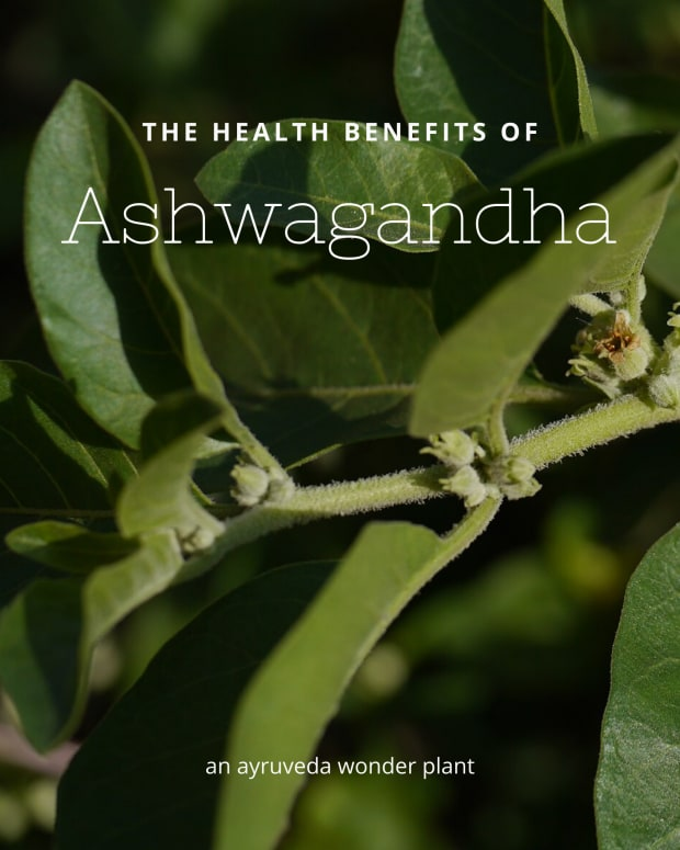 ashwagandha-withania-somnifera-and-its-health-benefits