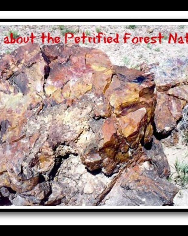 arizona-national-park-petrified-forest-desert-pictures-amazing