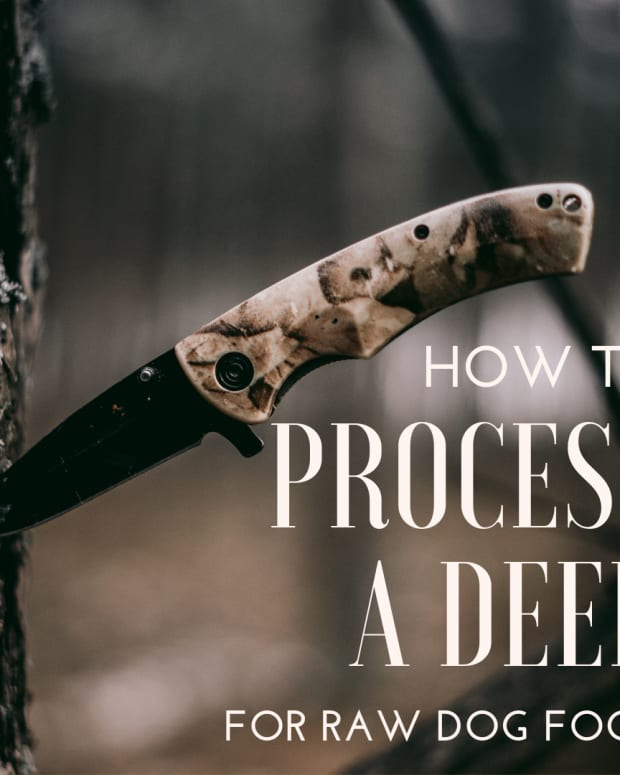 how-to-cut-up-a-deer-for-dog-food