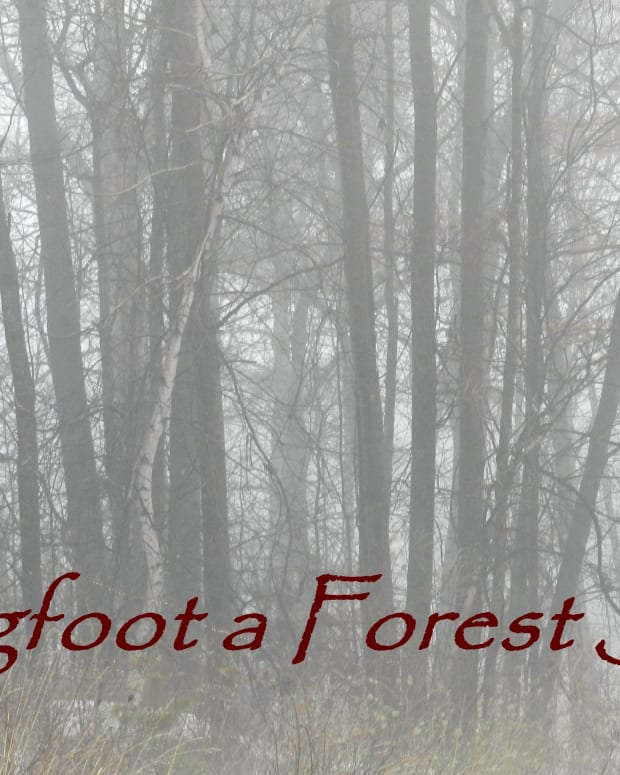 bigfoot-forest-spirit