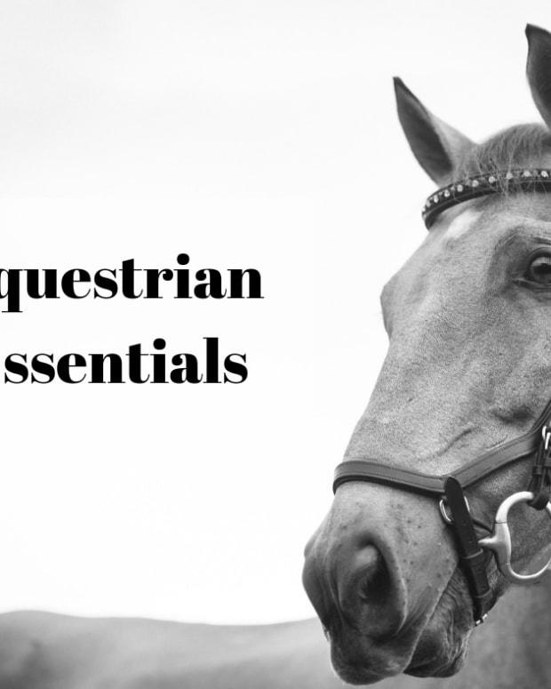 horse-riding-equipment-horse-clothing-101