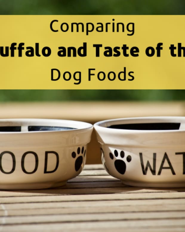 healthy-dog-food-blue-buffalo-vs-taste-of-the-wild
