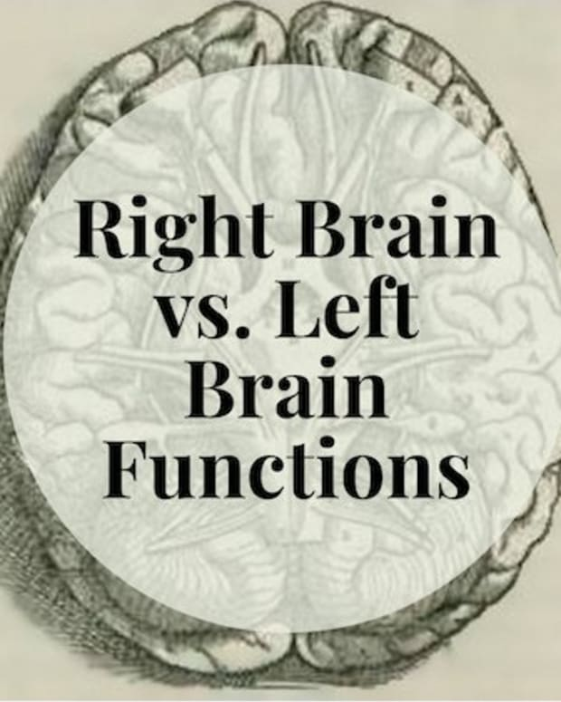 right-brain-vs-left-brain-functions