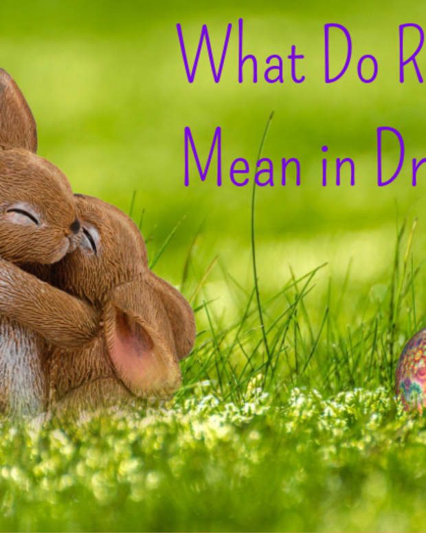 how-to-interpret-rabbits-as-dream-symbols