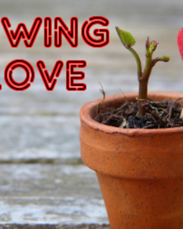 poem-sowing-love