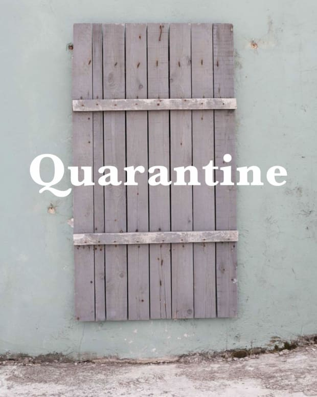 quarantine-local-and-global-histories-review