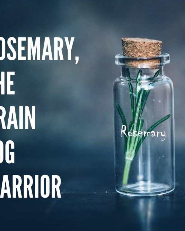 rosemary-the-brain-fog-warrior