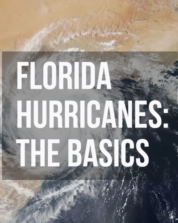 hurricanes-in-florida-a-beginners-guide