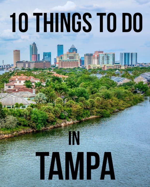 fun-things-to-do-in-tampa-florida