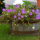 large-outdoor-urns-decorative-planters
