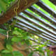 vertical-gardening-ideas-garden-trellis-for-vegetable-gardens