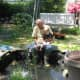 """Spring cleaning - pond with liner (""""flower pot"""" to right is actually a pond filter)."""