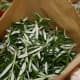 Rosemary leaves, bagged and ready to dry
