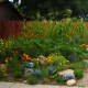 Lavender, Yellow, Orange, and Yellow-Orange Plantings
