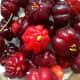 Dark red fruits taste sweeter.