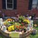 Our Fall Garden