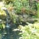 Koi pond on Halliday property