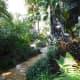 Lush landscape line all pathways