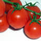 The red pigment in ripe tomatoes could give your stool a red tint.