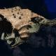 "Tyranid Light Cruiser - ""Bio Projectile Voidprowler"" - [Gorgon Sub-Faction]"