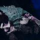 "Tyranid Light Cruiser - ""Bio Projectile Voidprowler"" - [Tiamet Sub-Faction]"