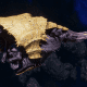 "Tyranid Light Cruiser - ""Bio Strangler Voidprowler"" - [Jormungandr Sub-Faction]"