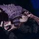 "Tyranid Light Cruiser - ""Bio Projectile Voidprowler"" - [Leviathan Sub-Faction]"