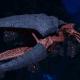 "Tyranid Light Cruiser - ""Corrosive Clutch Voidprowler"" - [Behemoth Sub-Faction]"